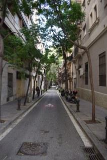 Ally in Barcelona